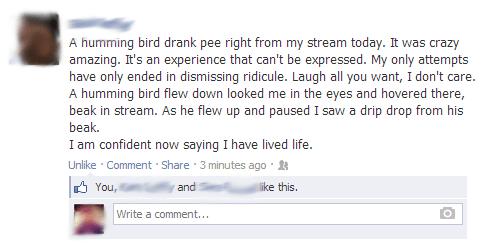 birds gross pee - 8118292480