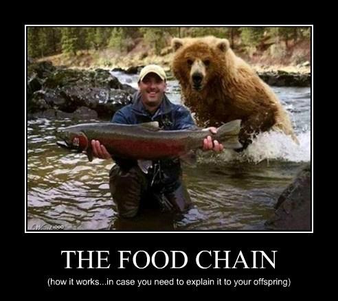 Cheezburger Image 8118407168
