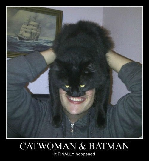 wtf kids batman Cats funny - 8119231488