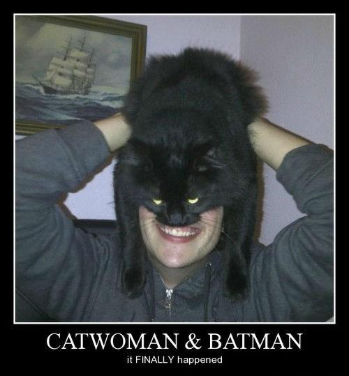 wtf kids batman Cats funny - 8119231488