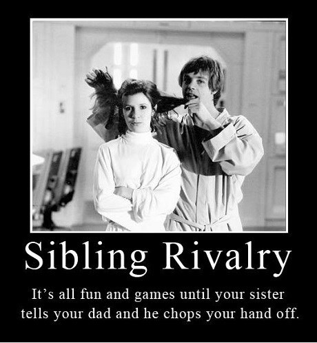 star wars sibling rivalry luke skywalker funny Princess Leia - 8119277568