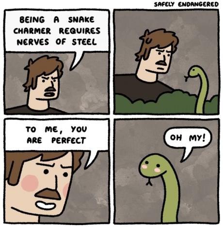 puns,charm,snakes,web comics