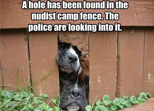 A hole has been found in the nudist camp fence. The police are looking into it.