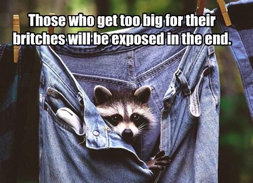 sayings pants funny - 8120693248