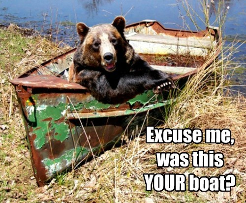 bears,mine,boats