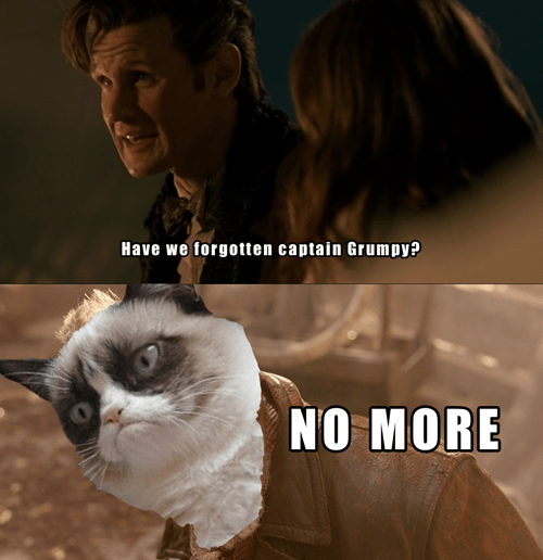 Grumpy Cat 11th Doctor war doctor - 8120763392