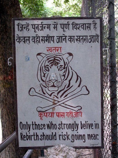 warning sign tiger dangerous g rated win