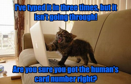 I've typed it in three times, but it isn't going through! Are you sure you got the human's card number right?