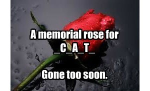 We Grieve Together.