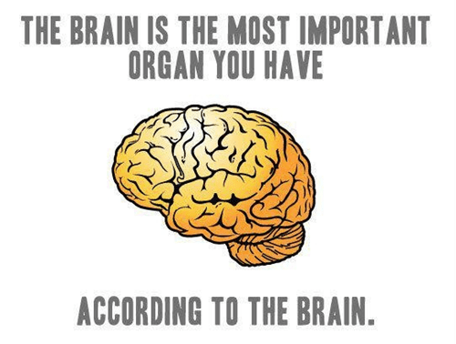 That Damn Brain is So Full of Itself!