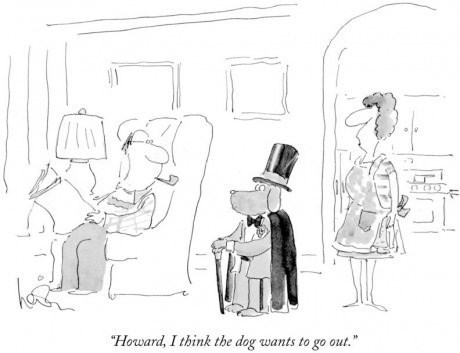 fancy dogs hats web comics - 8122874112