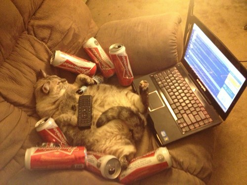 beer Cats crunk critters computer funny after 12 g rated - 8123023872