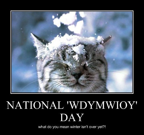 NATIONAL 'WDYMWIOY' DAY what do you mean winter isn't over yet?!