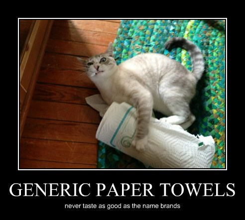 Cats cute destroy paper towels - 8123522560