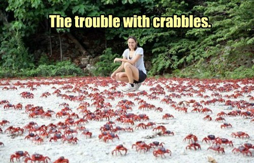 The trouble with crabbles.