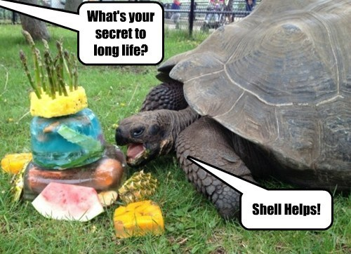 What's your secret to long life? Shell Helps!