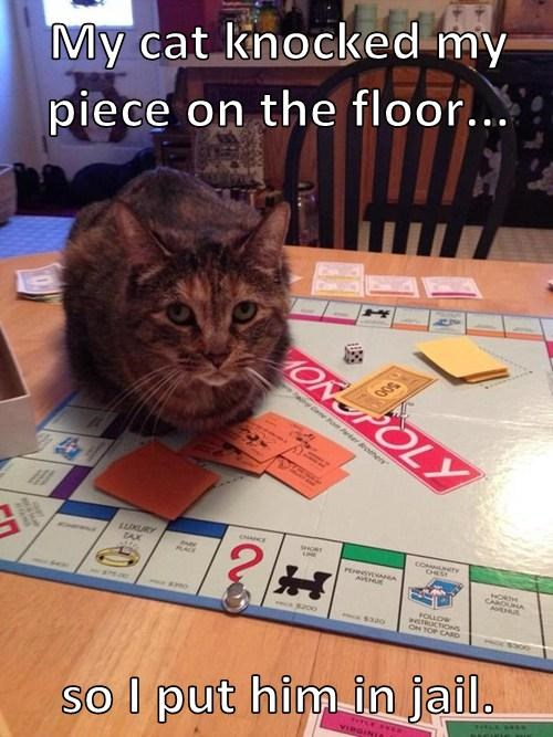 Cats,games,jerk,monopoly