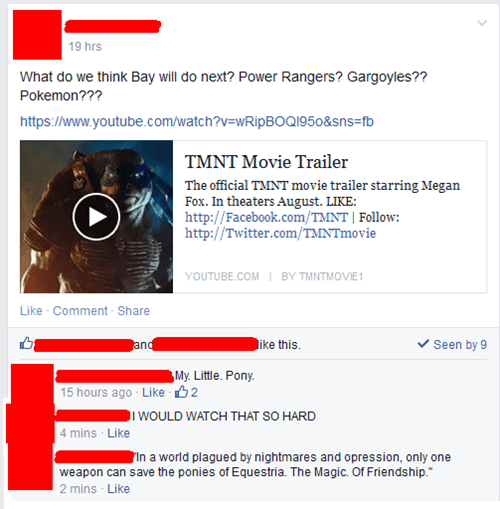 Michael Bay,MLP,facebook