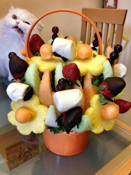 Edible Arrangements yuck Cats funny - 8125850112