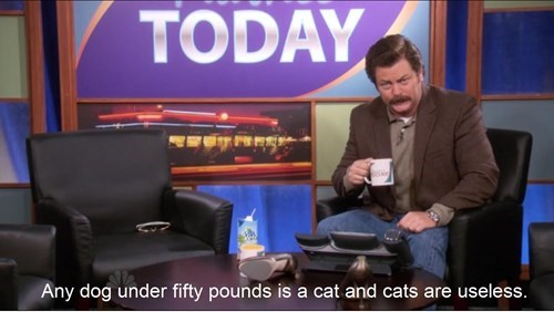 dogs ron swanson Cats
