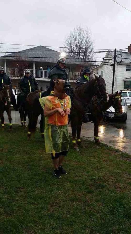 horse mask,horses,police