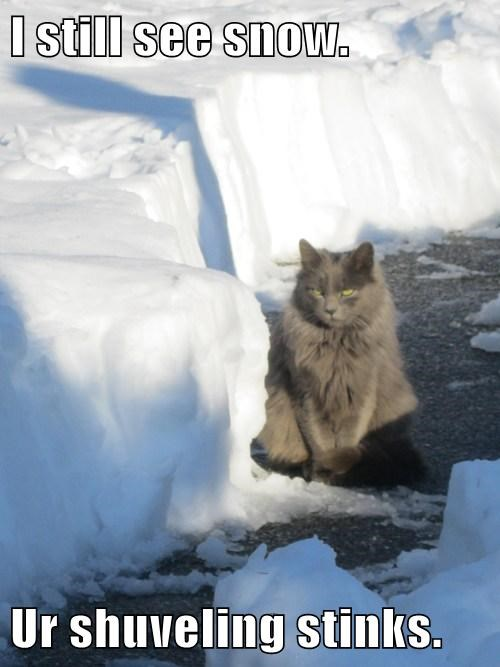 I still see snow.  Ur shuveling stinks.