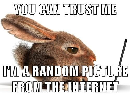 You Can Trust Me Im A Random Picture From The Internet