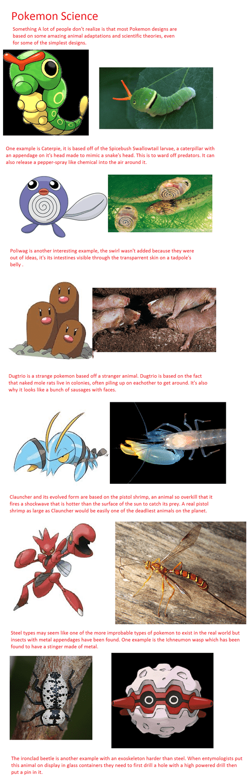 Real Life Pokemon More Probable Than We Think?
