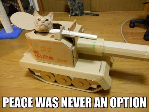 Battle tank noms Cats - 8128987392
