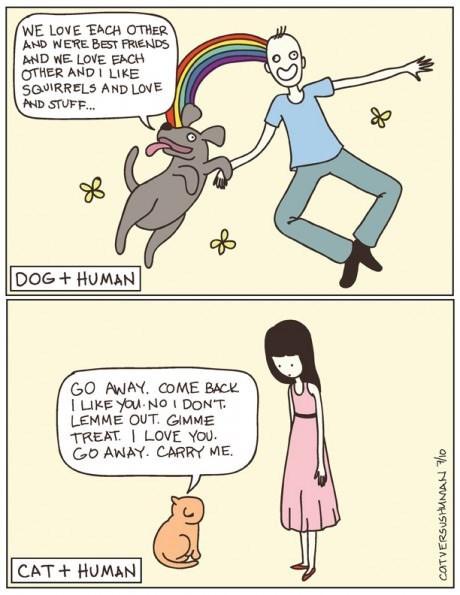 dogs Cats web comics - 8129755904