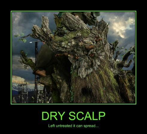 dry skin itch bark tree funny - 8129995008