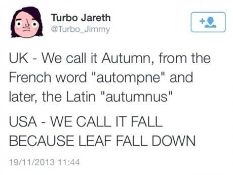 twitter,UK,fall