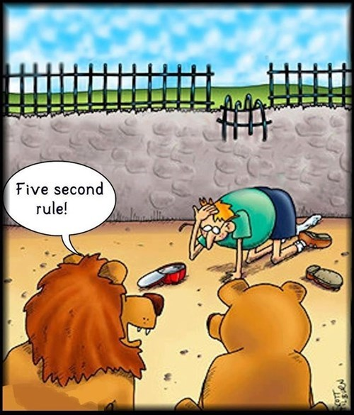 rules lions comics 5 second rule funny - 8130159360