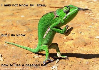 I may not know Jiu-Jitsu, but I do know  how to use a baseball bat.