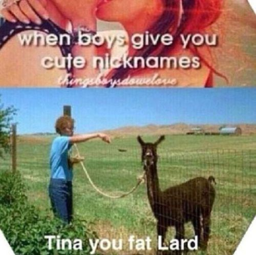 llama,napoleon dynamite,nicknames,funny,g rated,dating