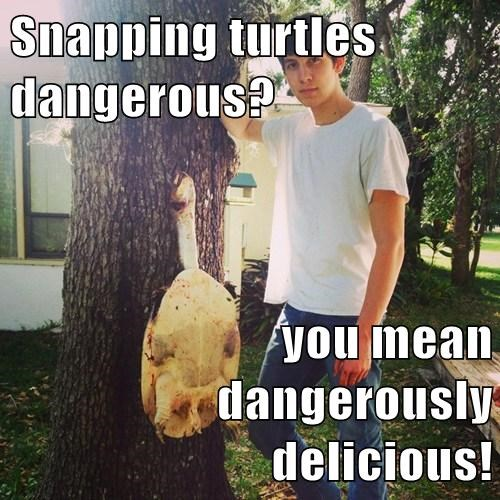 Snapping turtles dangerous?   you mean dangerously delicious!