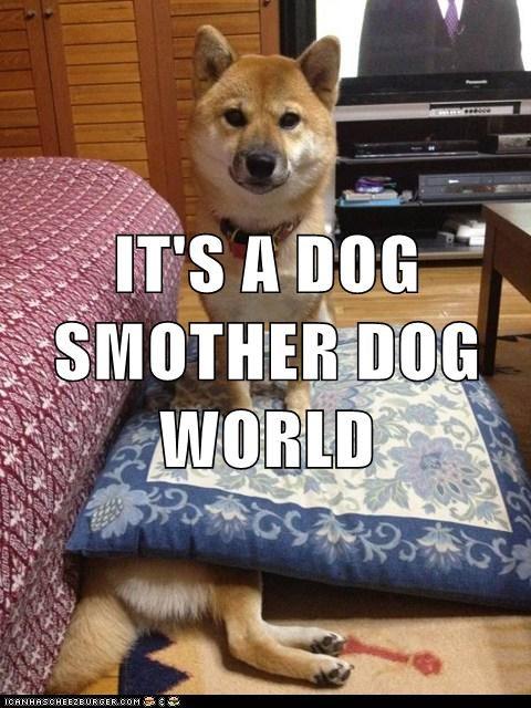 dog eat dog dogs funny - 8131174144