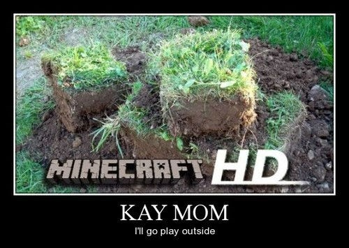 IRL minecraft video games funny