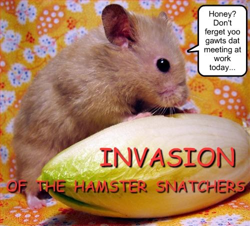 parody,hamsters,invasion of the body snatchers,funny