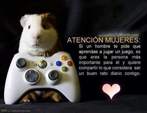 videojuegos Memes curiosidades - 8132676864