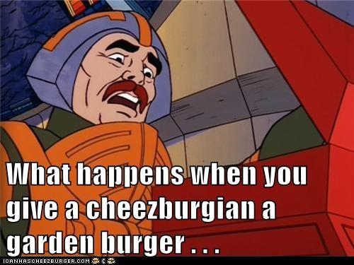 Cheezburger Image 8133208064