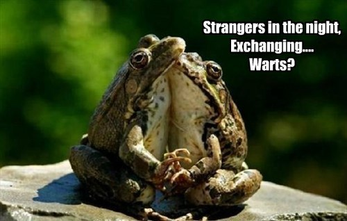 Strangers in the night, Exchanging.... Warts?