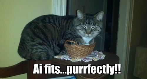 basket Cats cute funny I fits I sits - 8133676032