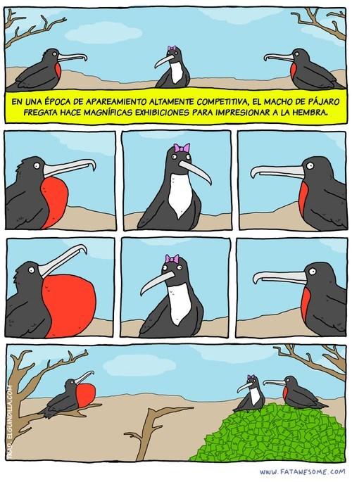 bromas viñetas Memes - 8133884928