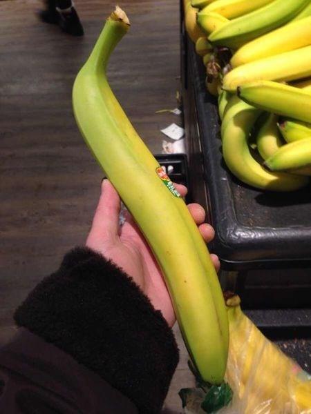 banana what food - 8133985792