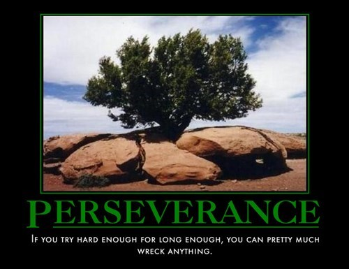 Perseverance wrecked funny - 8134039040