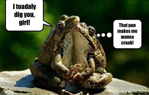 I toadaly dig you, girl! That pun makes me wanna croak!
