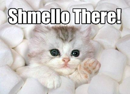 cute puns marshmallows kitten sweet - 8135067136