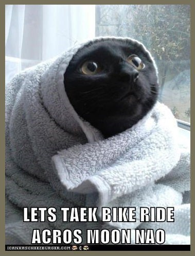 E.T featured user jiskat Cats funny - 8135096064