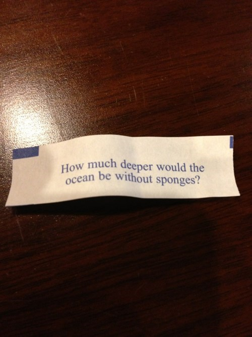 fortune cookie,funny,science,oceanography,g rated,School of FAIL
